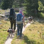 backpacking to ruth lake