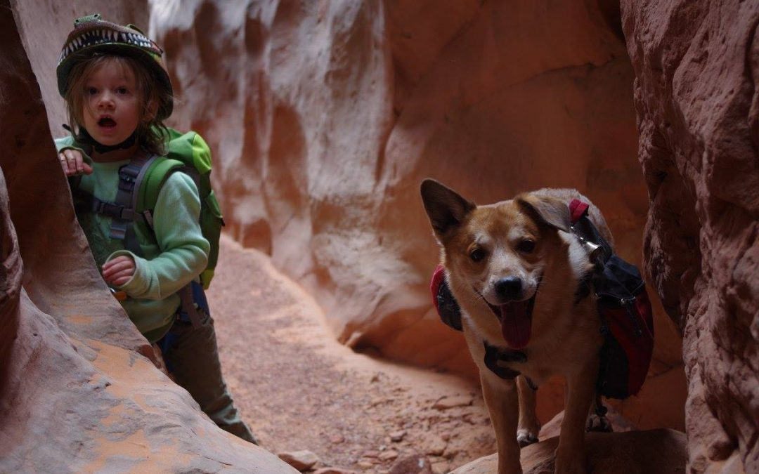 What is Canyoneering?